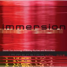 Immersion, Volume 1 - Healing Rhythms and Soothing Melodies CD