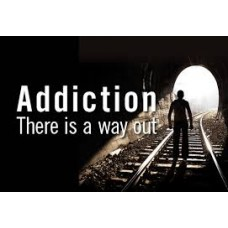 On-Line Therapy Programme for Addiction