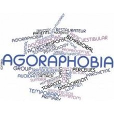 On-Line Therapy Programme for Agoraphobia