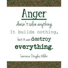 On-Line Therapy Programme for Anger