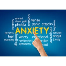 On-Line Therapy Programme for Anxiety