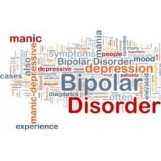 On-Line Therapy Programme for Bipolar