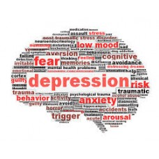 On-Line Therapy Programme for Depression