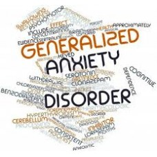 On-Line Therapy Programme for Generalised Anxiety Disorder (GAD)