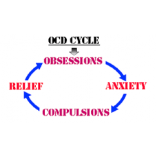 On-Line Therapy Programme for Obsessive Compulsive Disorder (OCD)