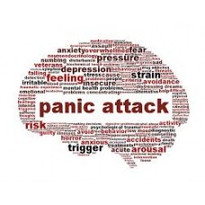On-Line Therapy Programme for Panic Attack