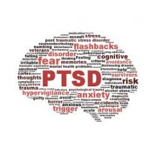 On-Line Therapy Programme for Post Traumatic Stress Disorder (PTSD)