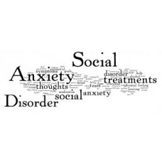 On-Line Therapy Programme for Social Anxiety