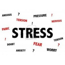 On-Line Therapy Programme for Stress
